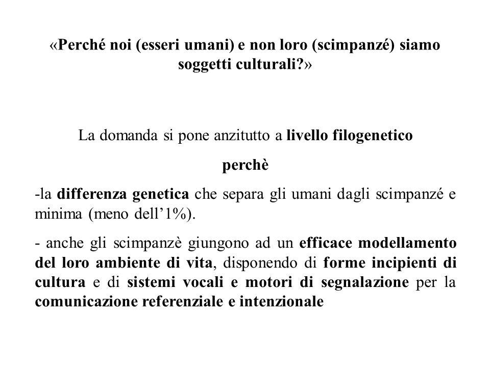 «Perché noi (esseri umani) e non loro (scimpanzé) siamo soggetti culturali?» La domanda si pone anzitutto a livello filogenetico perchè -la differenza