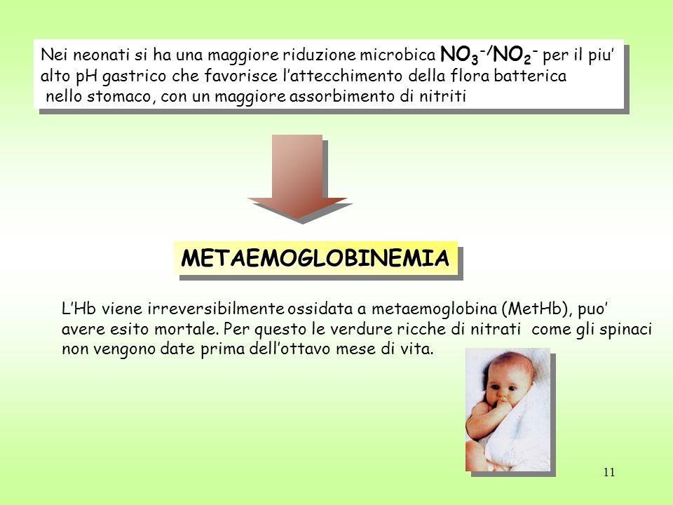11 Nei neonati si ha una maggiore riduzione microbica NO 3 -/ NO 2 - per il piu' alto pH gastrico che favorisce l'attecchimento della flora batterica nello stomaco, con un maggiore assorbimento di nitriti Nei neonati si ha una maggiore riduzione microbica NO 3 -/ NO 2 - per il piu' alto pH gastrico che favorisce l'attecchimento della flora batterica nello stomaco, con un maggiore assorbimento di nitriti METAEMOGLOBINEMIAMETAEMOGLOBINEMIA L'Hb viene irreversibilmente ossidata a metaemoglobina (MetHb), puo' avere esito mortale.