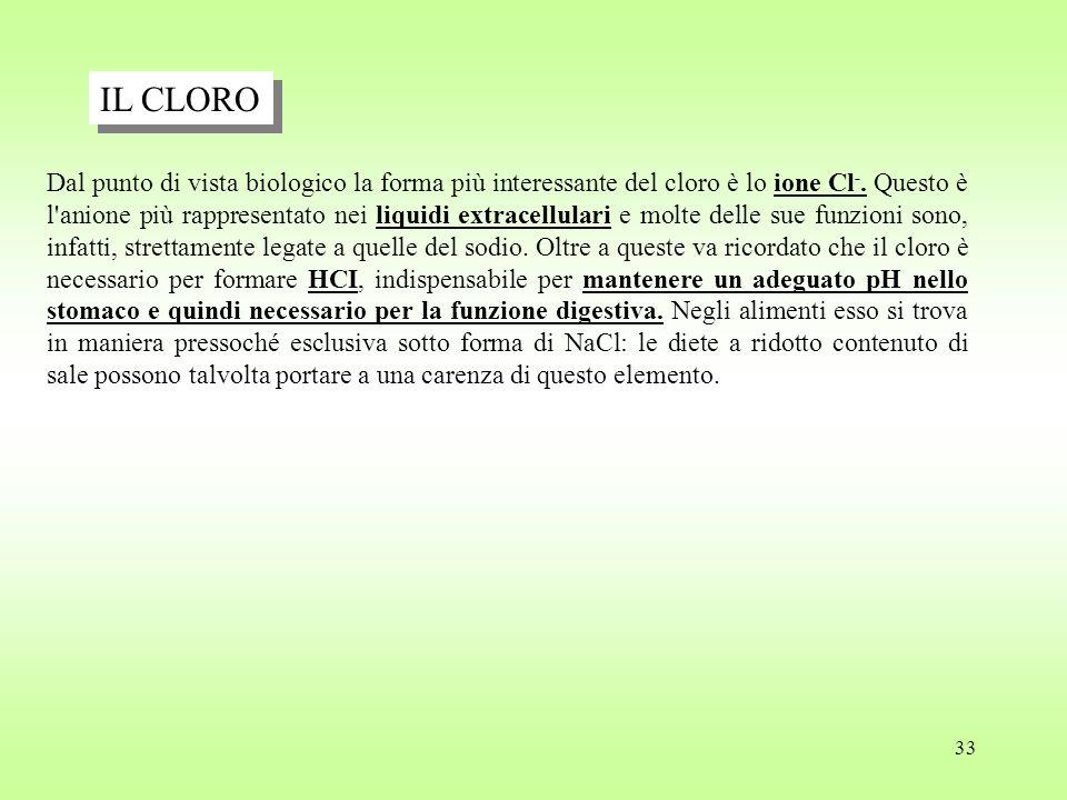 33 Dal punto di vista biologico la forma più interessante del cloro è lo ione Cl -.