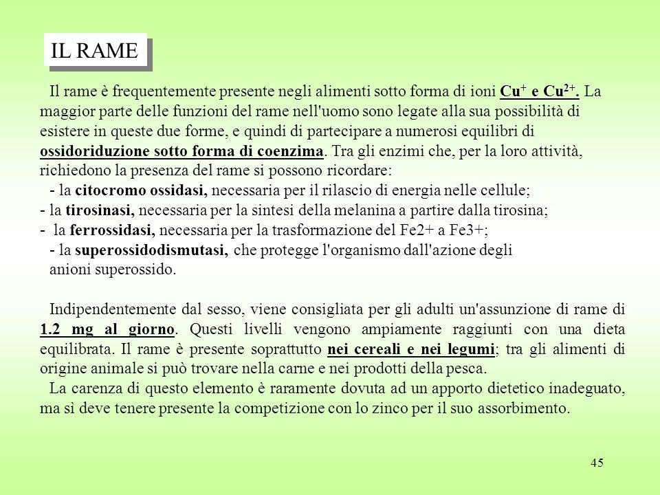 45 Cu + e Cu 2+.Il rame è frequentemente presente negli alimenti sotto forma di ioni Cu + e Cu 2+.