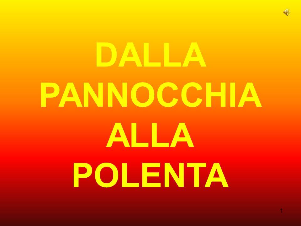 1 DALLA PANNOCCHIA ALLA POLENTA