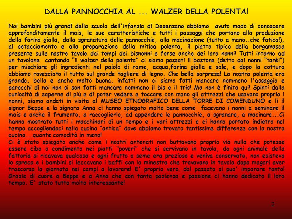 2 DALLA PANNOCCHIA AL... WALZER DELLA POLENTA! Noi bambini più grandi della scuola dell'infanzia di Desenzano abbiamo avuto modo di conoscere approfon