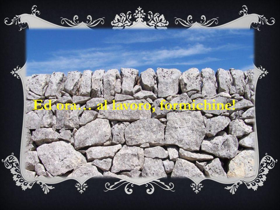 Neanche una strada, ad Alberobello, è dedicata a Tommaso Fiore.