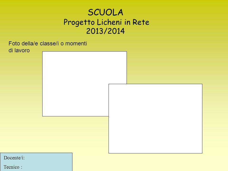 SCUOLA Progetto Licheni in Rete 2013/2014 Docente/i: Tecnico : Foto della/e classe/i o momenti di lavoro