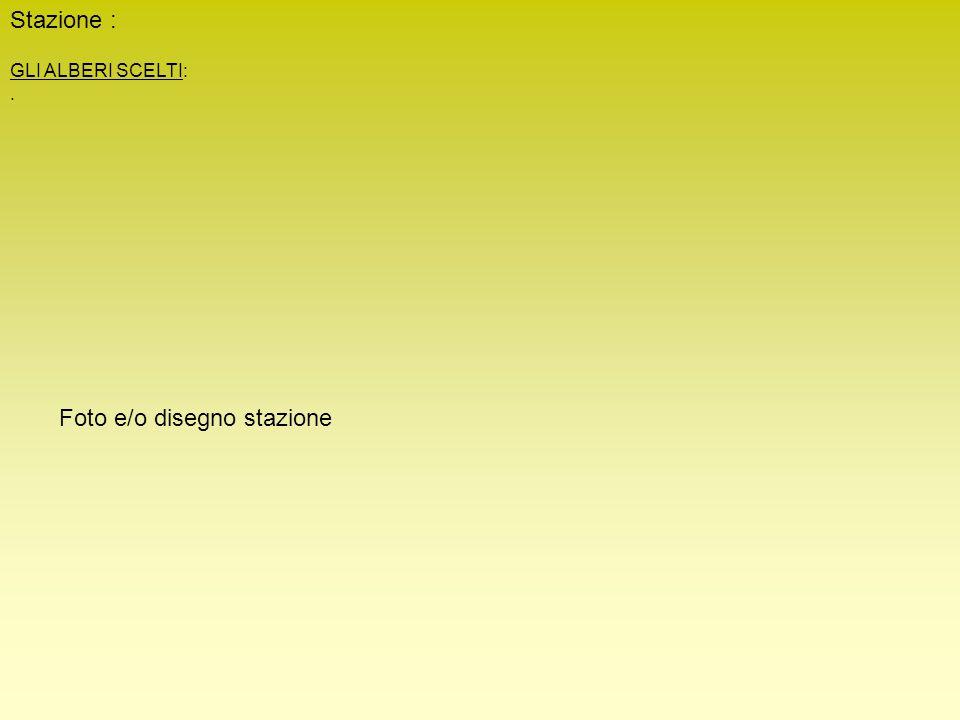 Stazione : GLI ALBERI SCELTI:. Foto e/o disegno stazione