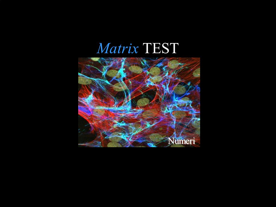 Matrix TEST Numeri