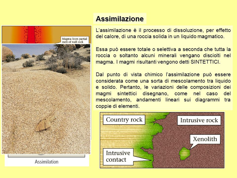 Assimilazione L'assimilazione è il processo di dissoluzione, per effetto del calore, di una roccia solida in un liquido magmatico. Essa può essere tot