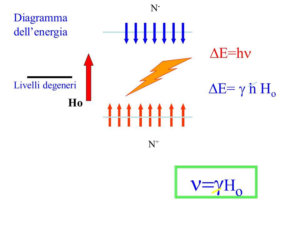 Ho N - /N + =e -  E/kT N-N- N+N+  E=  h H o  E=h  H o Diagramma dell'energia Livelli degeneri