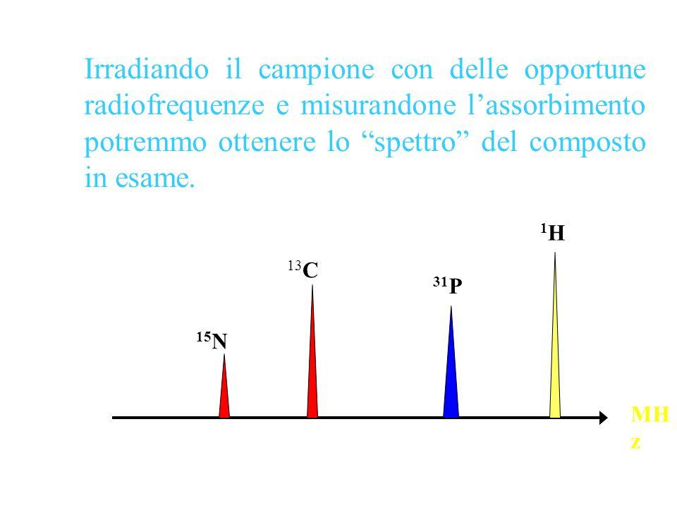 """Irradiando il campione con delle opportune radiofrequenze e misurandone l'assorbimento potremmo ottenere lo """"spettro"""" del composto in esame. 13 C 15 N"""