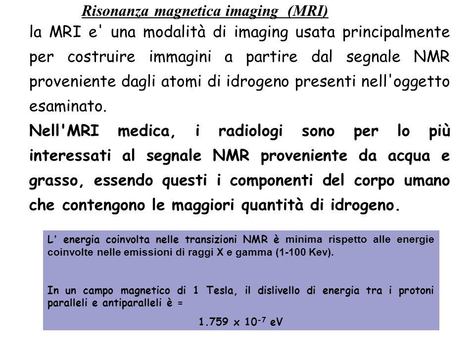 Risonanza magnetica imaging (MRI) L' energia coinvolta nelle transizioni NMR è minima rispetto alle energie coinvolte nelle emissioni di raggi X e gam
