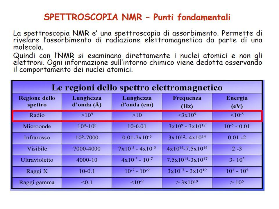 In vivo 31 P NMR di Corynebacterium glutamicum