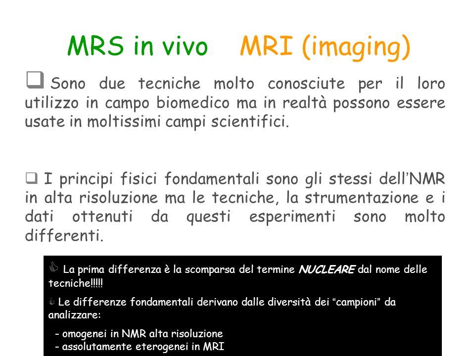 MRS in vivo e MRI (imaging)  Sono due tecniche molto conosciute per il loro utilizzo in campo biomedico ma in realtà possono essere usate in moltissi