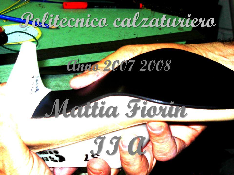 Anno 2007 2008 Anno 2007 2008 Mattia Fiorin Mattia Fiorin II A II A Politecnico calzaturiero