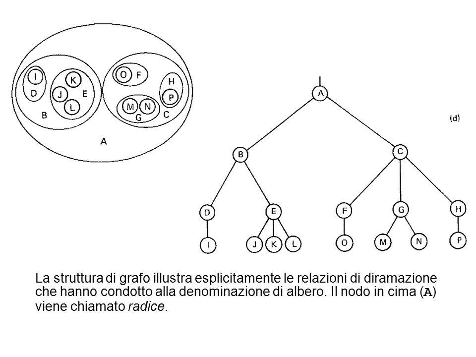La struttura di grafo illustra esplicitamente le relazioni di diramazione che hanno condotto alla denominazione di albero.