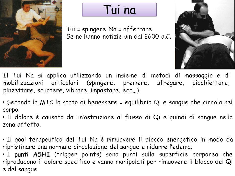 Tui na Tui = spingere Na = afferrare Se ne hanno notizie sin dal 2600 a.C. Secondo la MTC lo stato di benessere = equilibrio Qi e sangue che circola n