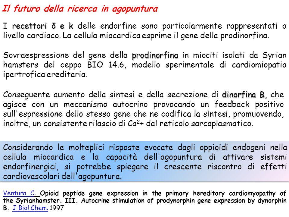 Ventura CVentura C. Opioid peptide gene expression in the primary hereditary cardiomyopathy of the Syrianhamster. III. Autocrine stimulation of prodyn