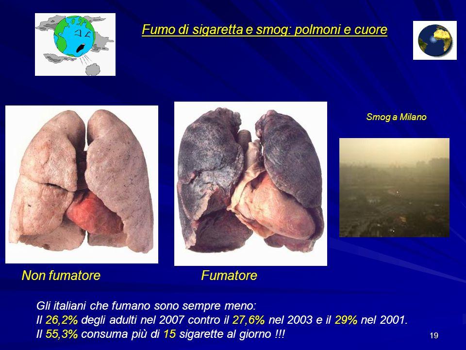 18 + 50% i K a pelvi e vescica + 3-4 volte i K al pancreas + 5-6 volte i K a bocca, faringe esofago, laringe + 20-30% i K polmonari Fumo di sigaretta Rishio Relativo per fumo passivo +20%