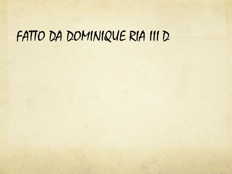 FATTO DA DOMINIQUE RIA III D