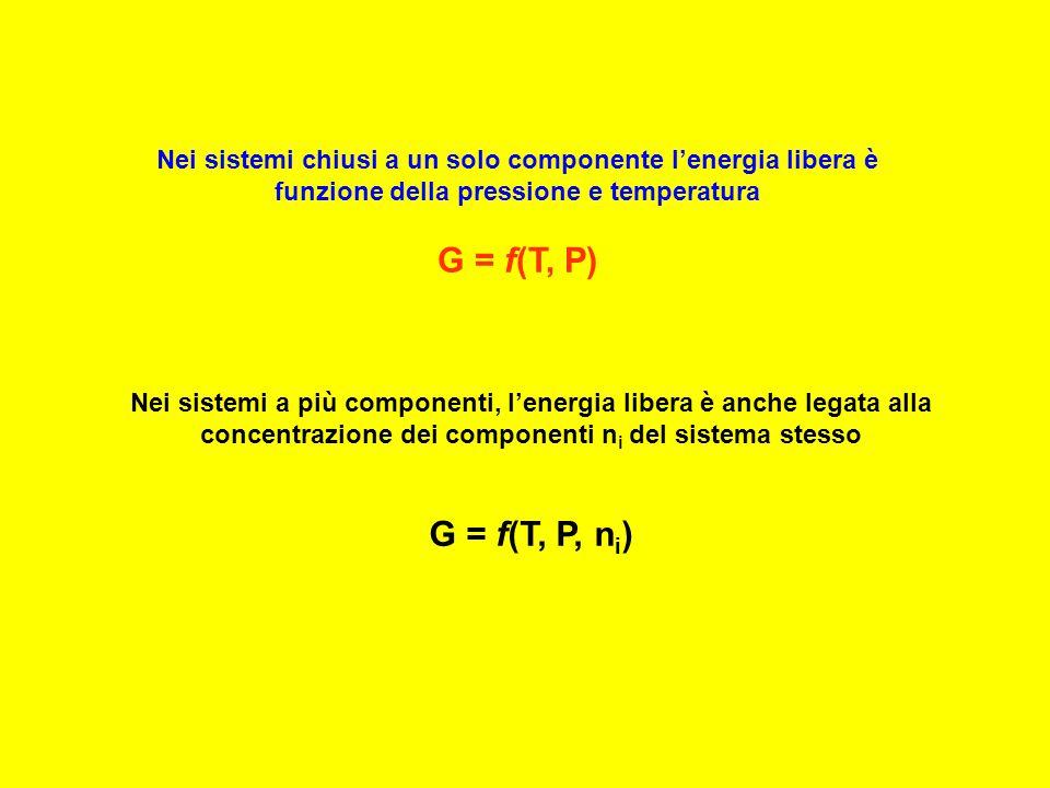 Nei sistemi a più componenti, l'energia libera è anche legata alla concentrazione dei componenti n i del sistema stesso G = f(T, P, n i ) Nei sistemi