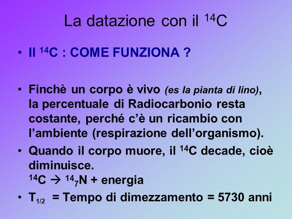 La datazione con il 14 C Il 14 C : COME FUNZIONA ? Finchè un corpo è vivo (es la pianta di lino), la percentuale di Radiocarbonio resta costante, perc