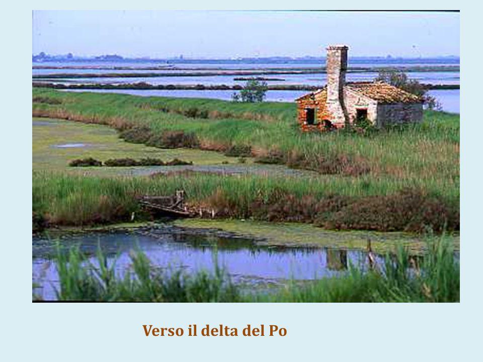 Verso il delta del Po