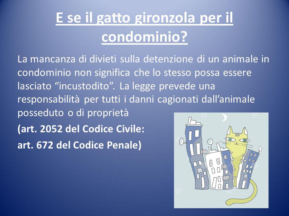 E se il gatto gironzola per il condominio? La mancanza di divieti sulla detenzione di un animale in condominio non significa che lo stesso possa esser