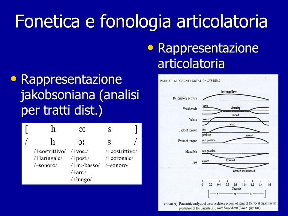 Fonetica articolatoria: schemi sagittali per la fase di occlusione delle affricate
