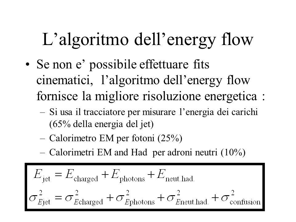 L'algoritmo dell'energy flow Se non e' possibile effettuare fits cinematici, l'algoritmo dell'energy flow fornisce la migliore risoluzione energetica : –Si usa il tracciatore per misurare l'energia dei carichi (65% della energia del jet) –Calorimetro EM per fotoni (25%) –Calorimetri EM and Had per adroni neutri (10%)