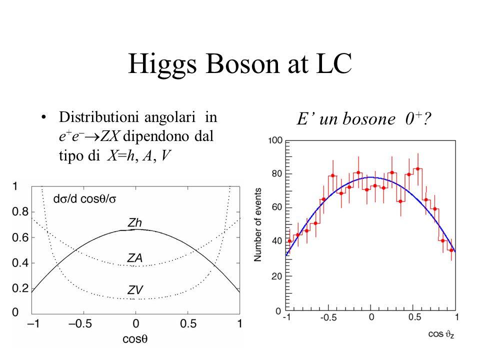 L'algoritmo dell'energy flow Ignorando il termine di tracking ( piccolo): – e' il contributo piu' grande