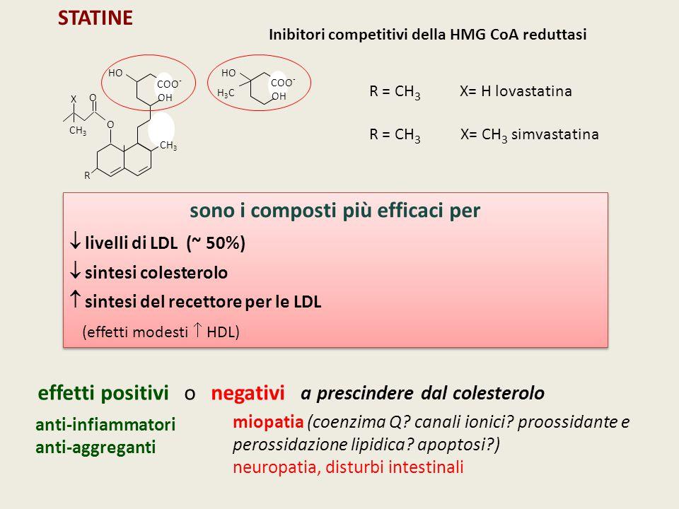 R HO CH 3 COO - OH O O CH 3 X HO COO - OH H3CH3C R = CH 3 X= H lovastatina R = CH 3 X= CH 3 simvastatina STATINE Inibitori competitivi della HMG CoA r