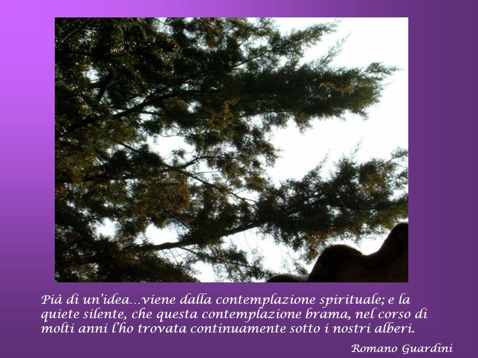 Verrà il giorno che il creato risuonerà come il grande canto di un ineffabile maestro di musica… S. Agostino