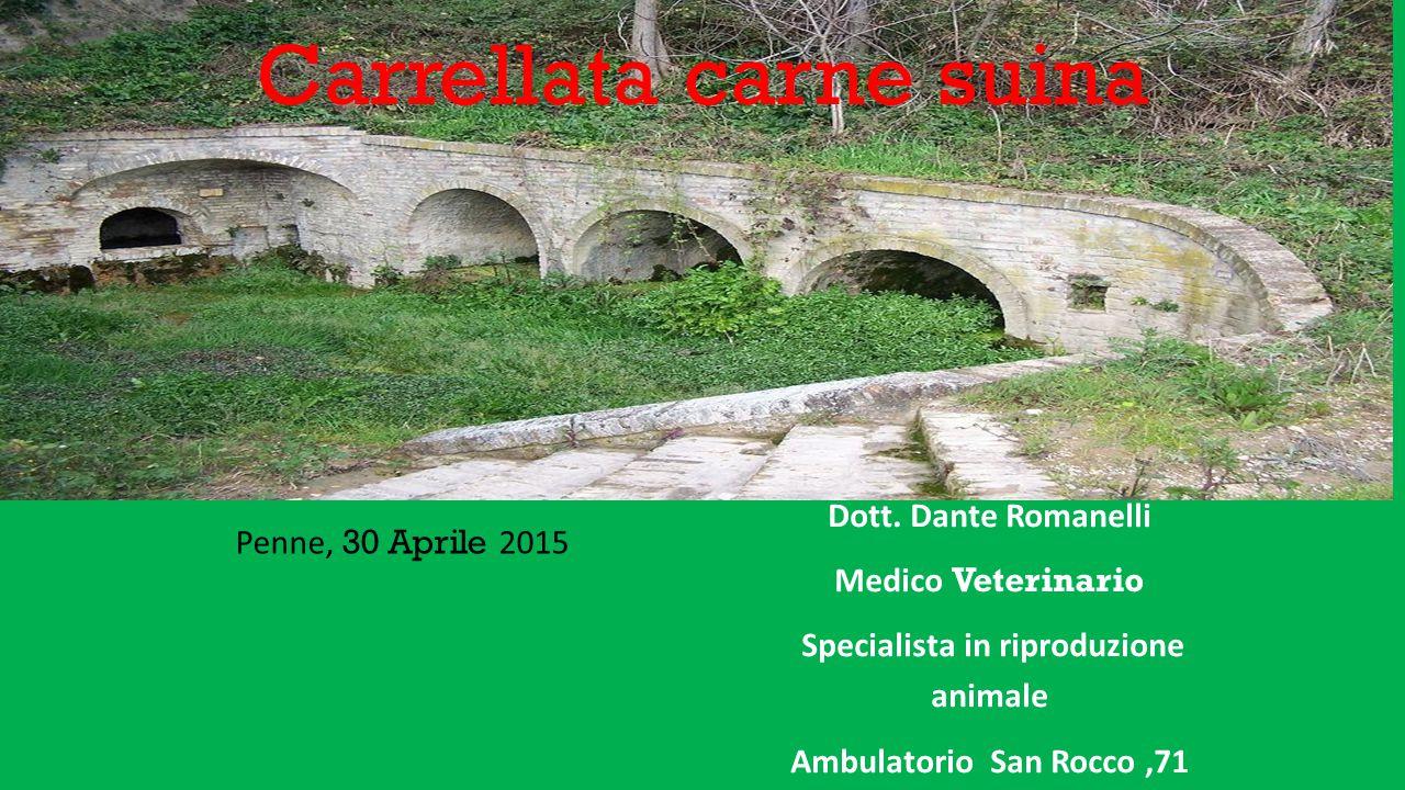 Carrellata carne suina Penne, 30 Aprile 2015 Dott. Dante Romanelli Medico Veterinario Specialista in riproduzione animale Ambulatorio San Rocco,71