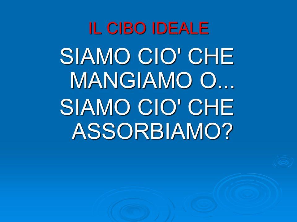Ora cominciamo a capire meglio, che cosa c'è SOTTO, aviaria, mucca pazza e gli altri scandali alimentari, specie in Italia .