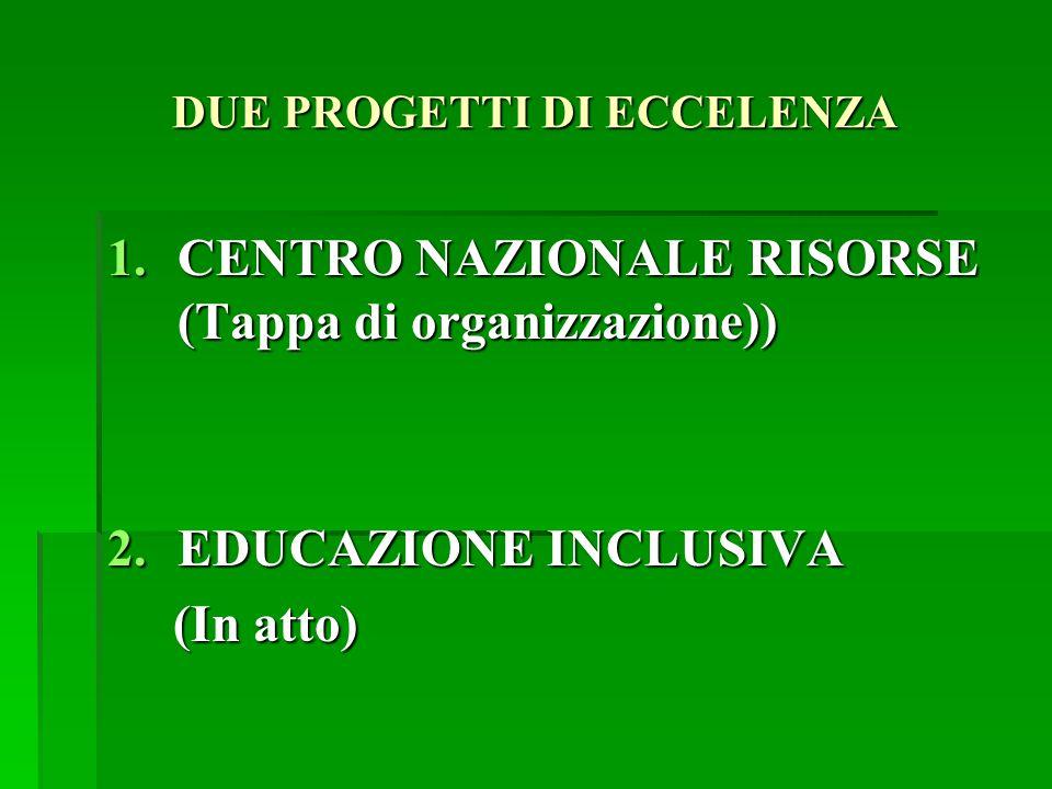 DUE PROGETTI DI ECCELENZA 1.CENTRO NAZIONALE RISORSE (Tappa di organizzazione)) 2.EDUCAZIONE INCLUSIVA (In atto) (In atto)