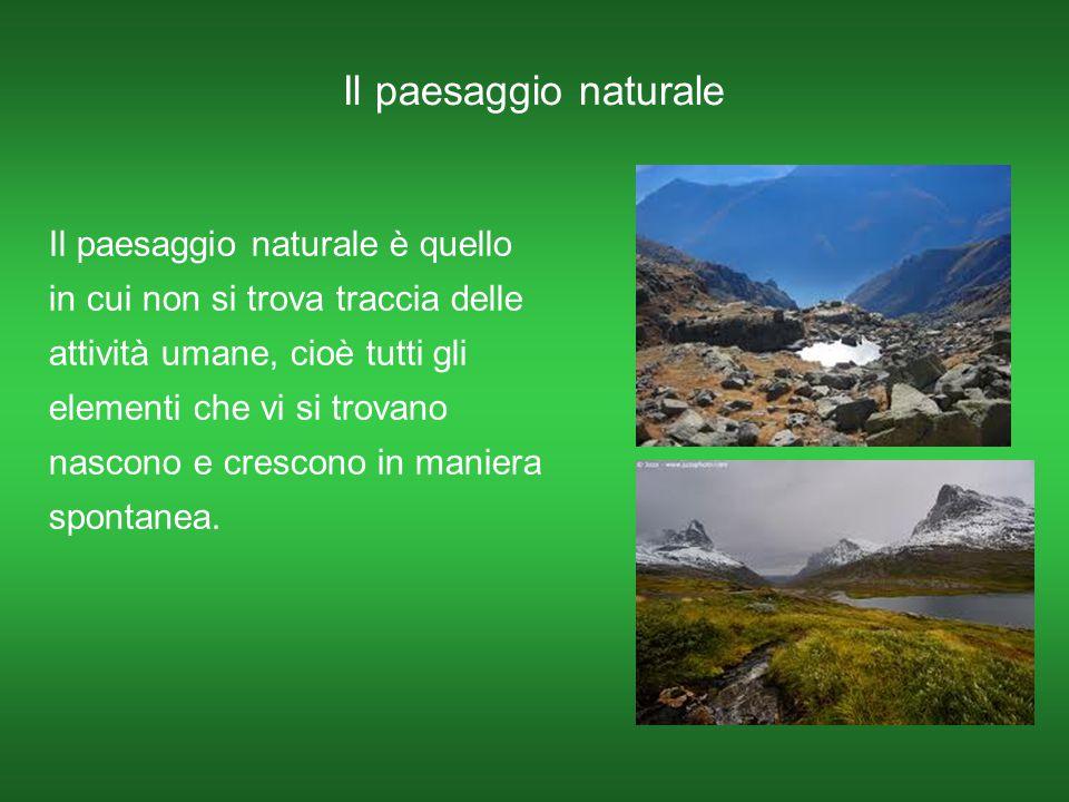 Il paesaggio naturale Il paesaggio naturale è quello in cui non si trova traccia delle attività umane, cioè tutti gli elementi che vi si trovano nasco