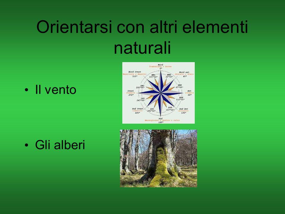 Orientarsi con altri elementi naturali Il vento Gli alberi