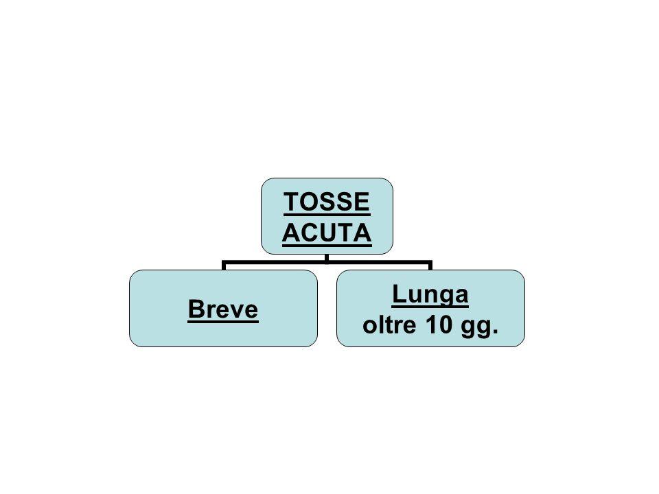 Progetto sei più 1 Azioni previste dal sei più 1 e loro affetti protettivi AZIONI PROTEZIONE VERSO: Assunzione di acido folico Spina bifida, altre malform.