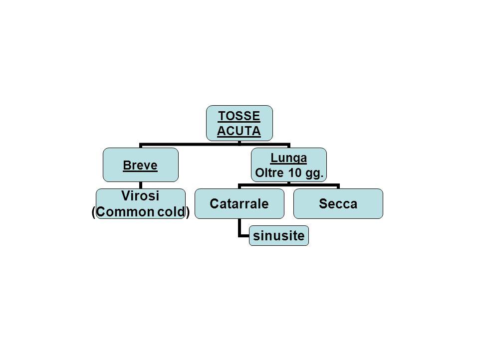 sinusite Quando la rinorrea mucopurulenta si mantiene oltre i 10 giorni associata a tosse catarrale specie al momento di coricarsi o al risveglio Dopo i lavaggi (o le soffiate …) se con la rinoscopia si conferma il mucopus nel meato medio con magari colata in rinofaringe, è ragionevole trattamento con amoxicillina