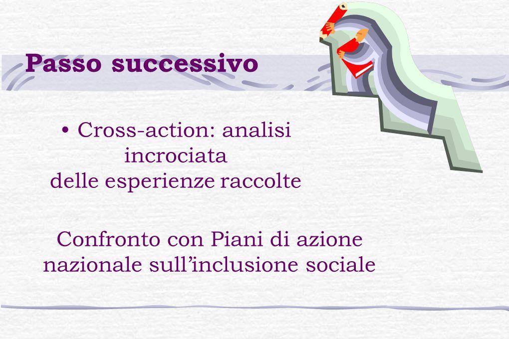 Cross-action: analisi incrociata delle esperienze raccolte Confronto con Piani di azione nazionale sull'inclusione sociale Passo successivo