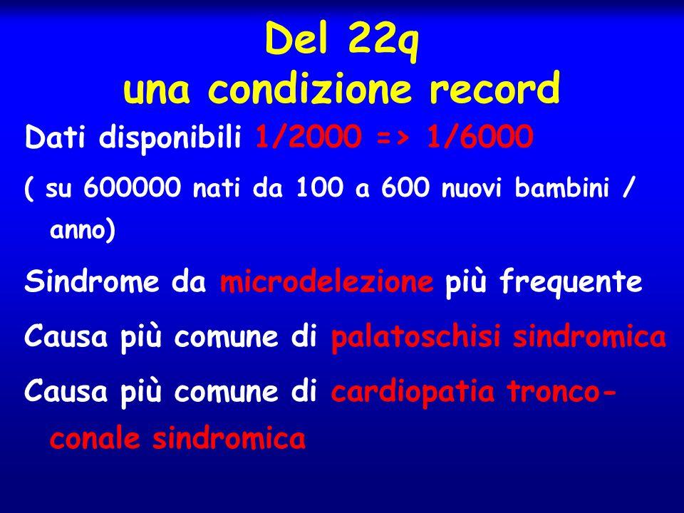 Del 22q una condizione record Dati disponibili 1/2000 => 1/6000 ( su 600000 nati da 100 a 600 nuovi bambini / anno) Sindrome da microdelezione più fre