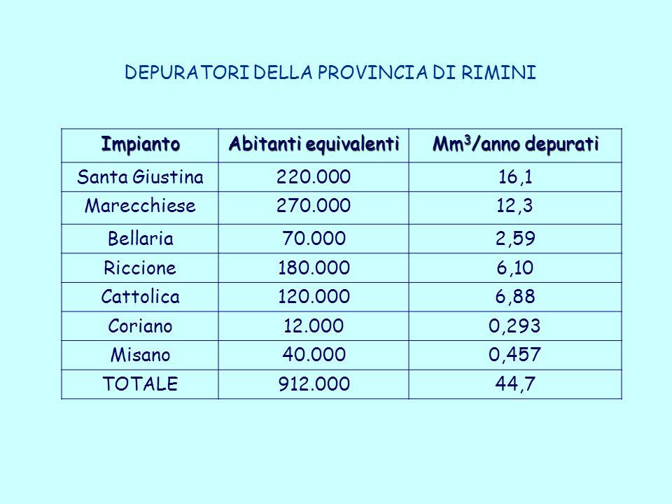 DEPURATORI DELLA PROVINCIA DI RIMINI Impianto Abitanti equivalenti Mm 3 /anno depurati Santa Giustina220.00016,1 Marecchiese270.00012,3 Bellaria70.0002,59 Riccione180.0006,10 Cattolica120.0006,88 Coriano12.0000,293 Misano40.0000,457 TOTALE912.00044,7