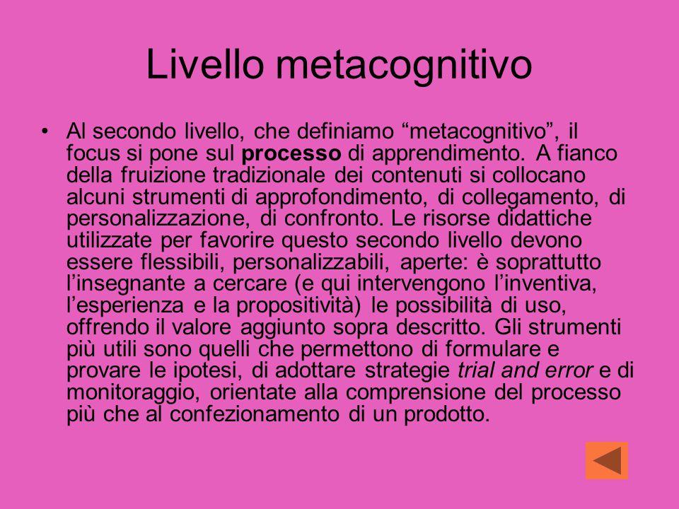 Livello metacognitivo Al secondo livello, che definiamo metacognitivo , il focus si pone sul processo di apprendimento.