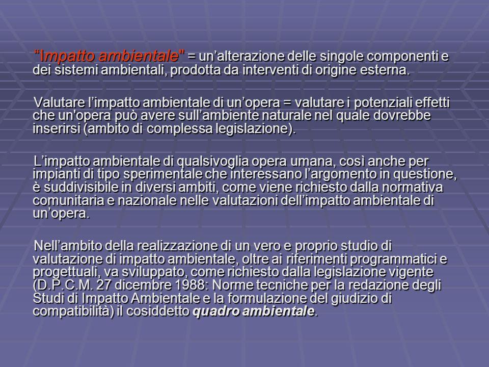 Quali siano gli impatti ambientali di un impianto sperimentale INFN: riferimento alle linee guida che ci offre la normativa italiana nel definire gli aspetti ambientali da tenere in conto per la progettazione di un'opera sottoposta a VIA.