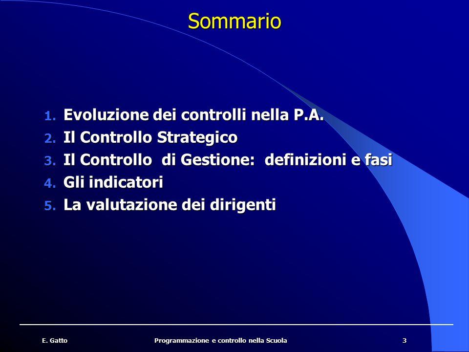 3E. GattoProgrammazione e controllo nella Scuola Sommario 1. Evoluzione dei controlli nella P.A. 2. Il Controllo Strategico 3. Il Controllo di Gestion