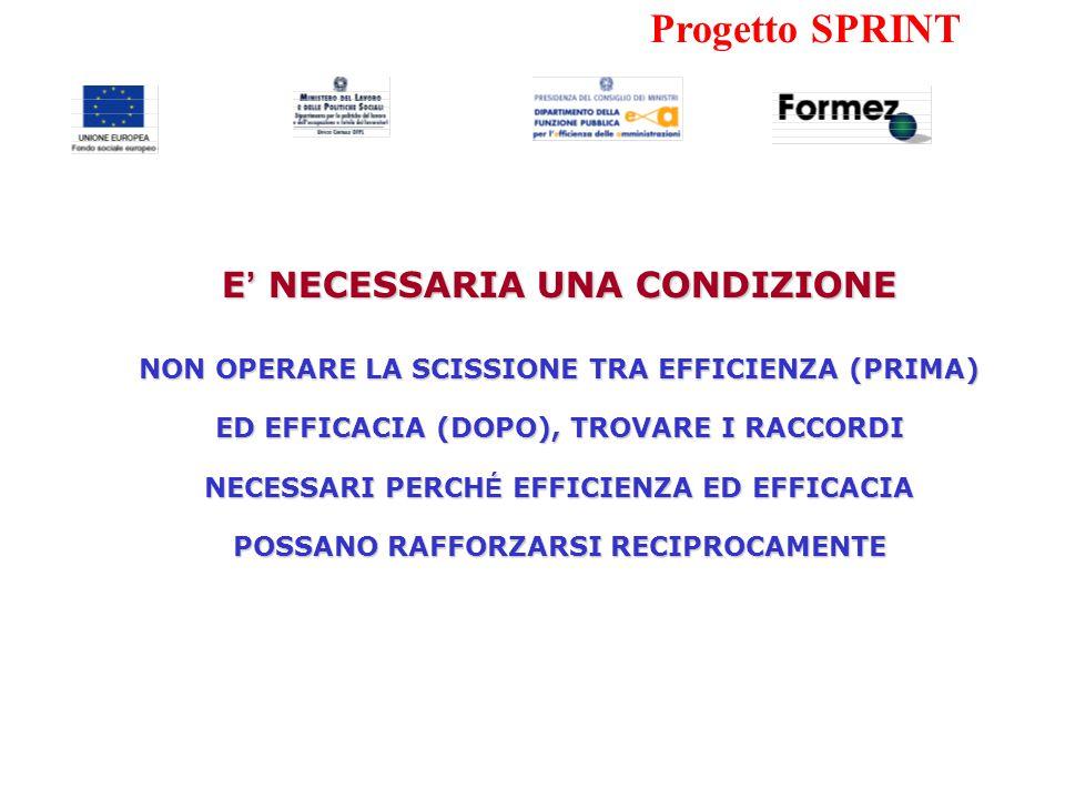 Progetto SPRINT CHE FARE PER L'EFFICIENZA IL CONTRIBUTO DEL FORMEZ/DFP – PROGETTO SPRINT