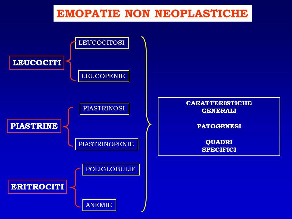 LEUCEMIA LINFATICA CRONICA: emocromo EsameRisultatiU.M.
