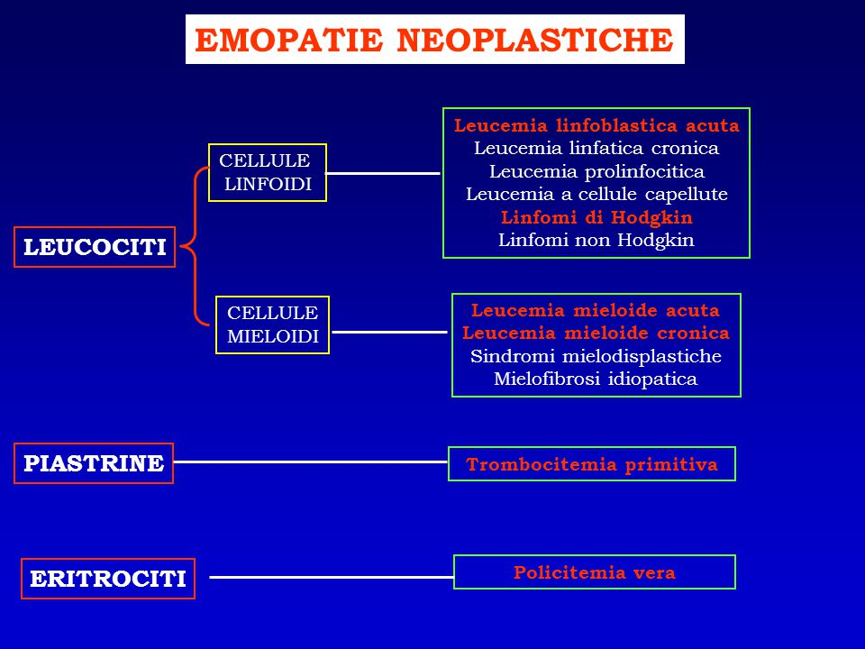 LEUCEMIE ACUTE DIAGNOSI SANGUE PERIFERICO ASPIRATO MIDOLLARE IMMUNOFENOTIPO (Citofluorimetria) CARIOTIPO BIOLOGIA MOLECOLARE