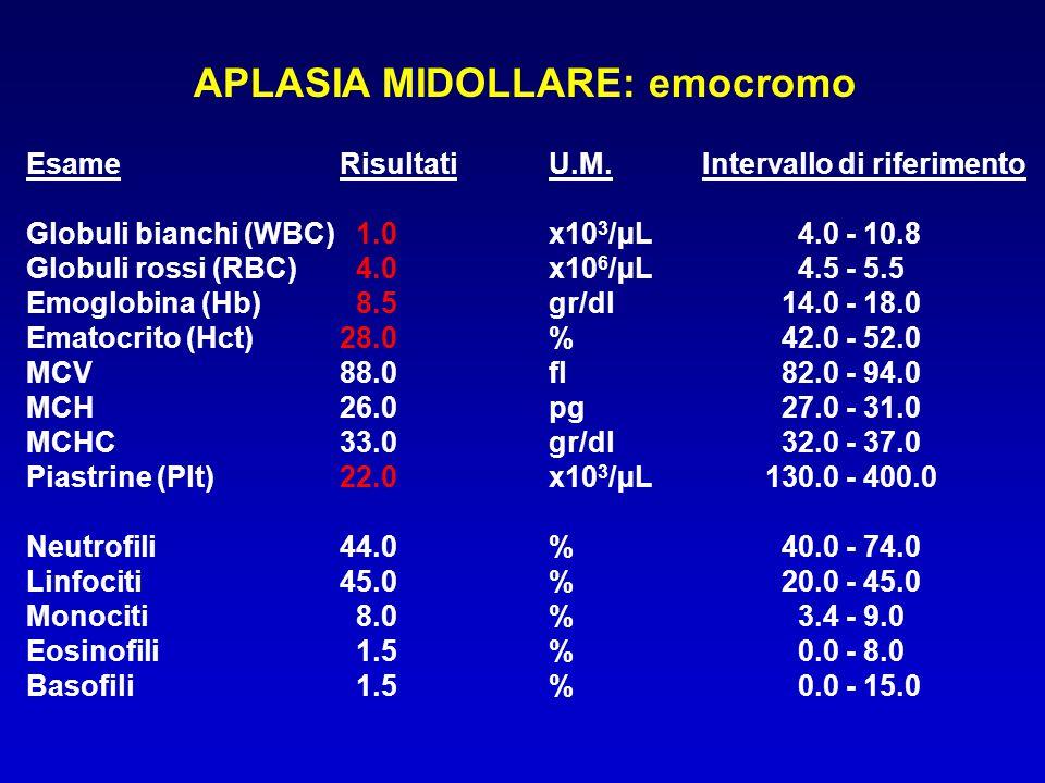 APLASIA MIDOLLARE: biopsia midollare