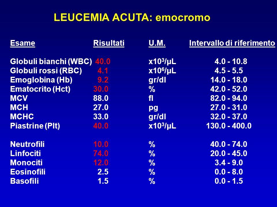LEUCEMIE ACUTE : FISIOPATOLOGIA 1)INSUFFICIENZA MIDOLLARE 2) INFILTRAZIONE DI TESSUTI E ORGANI NON EMOPOIETICI DA PARTE DELLE CELLULE BLASTICHE 3) LIBERAZIONE DI CITOCHINE