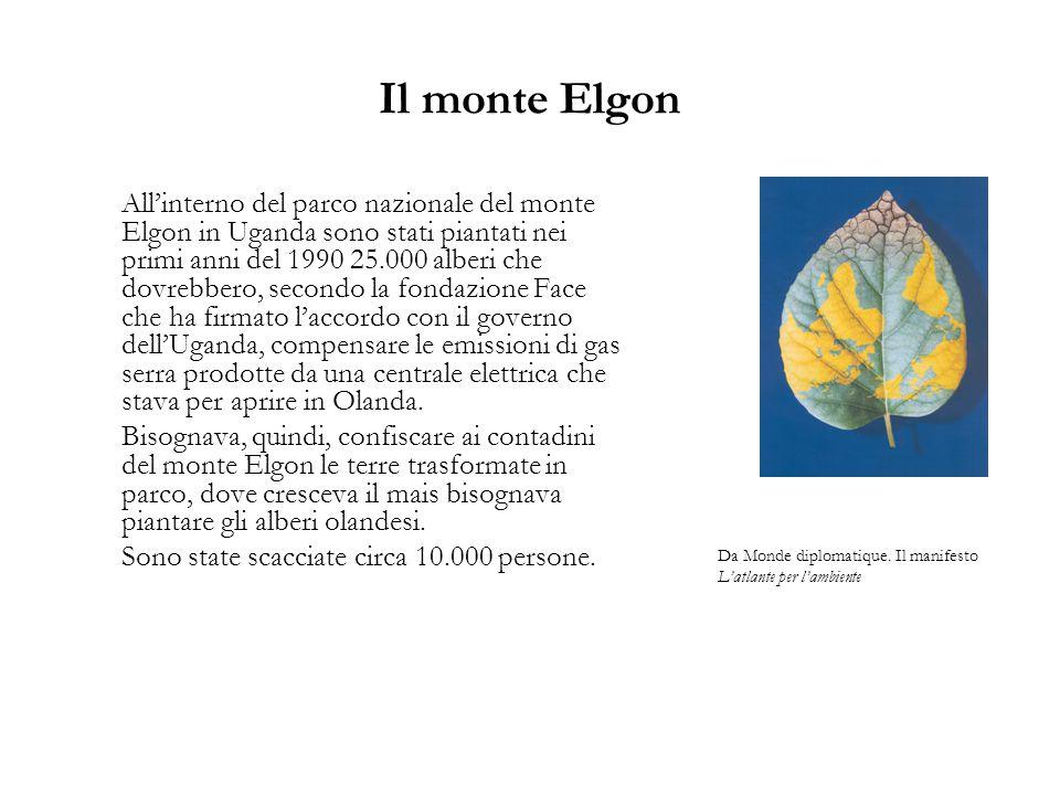 Il monte Elgon All'interno del parco nazionale del monte Elgon in Uganda sono stati piantati nei primi anni del 1990 25.000 alberi che dovrebbero, secondo la fondazione Face che ha firmato l'accordo con il governo dell'Uganda, compensare le emissioni di gas serra prodotte da una centrale elettrica che stava per aprire in Olanda.